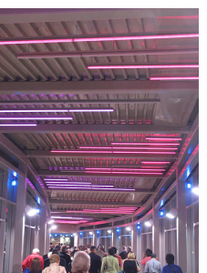 Covered Walkway from Grosvenor-Strathmore Metro station