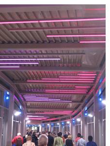 Covered Walkway from Grosvenor-Strathmore Metro station